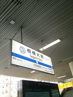DSC_3524.JPG